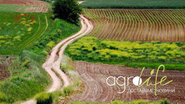 Agrolife - agrobusiness news